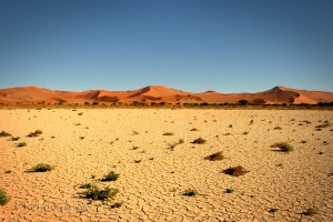 Dried vlei (lake)